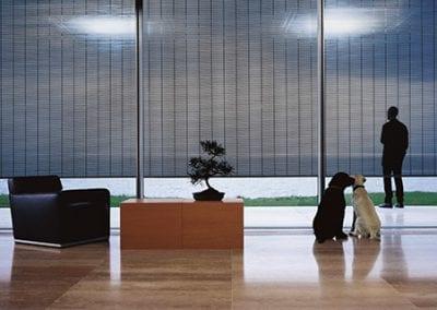 fönsterjalusi inomhus